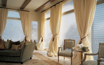 INTEGRATING BLINDS